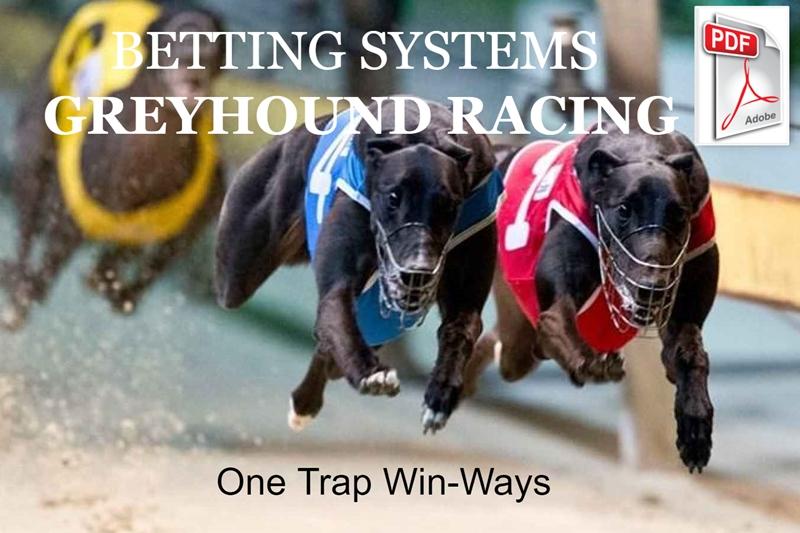 Betting systems that win greyhound racing binary options strategies 2021 world