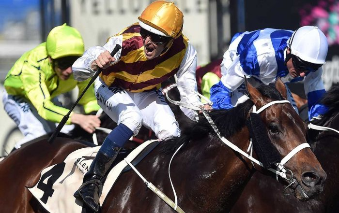 MALBOT Horse Racing Bot for Betfair and Bookmakers - A