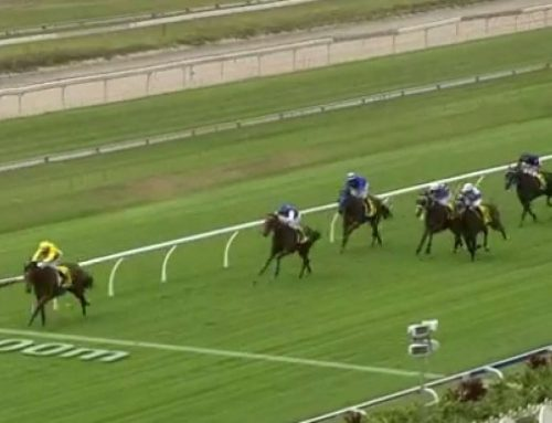 Doomben favourite rolled after hitting $1.01